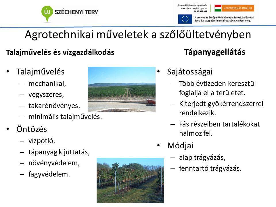 Agrotechnikai műveletek a szőlőültetvényben Talajművelés és vízgazdálkodás Talajművelés – mechanikai, – vegyszeres, – takarónövényes, – minimális tala