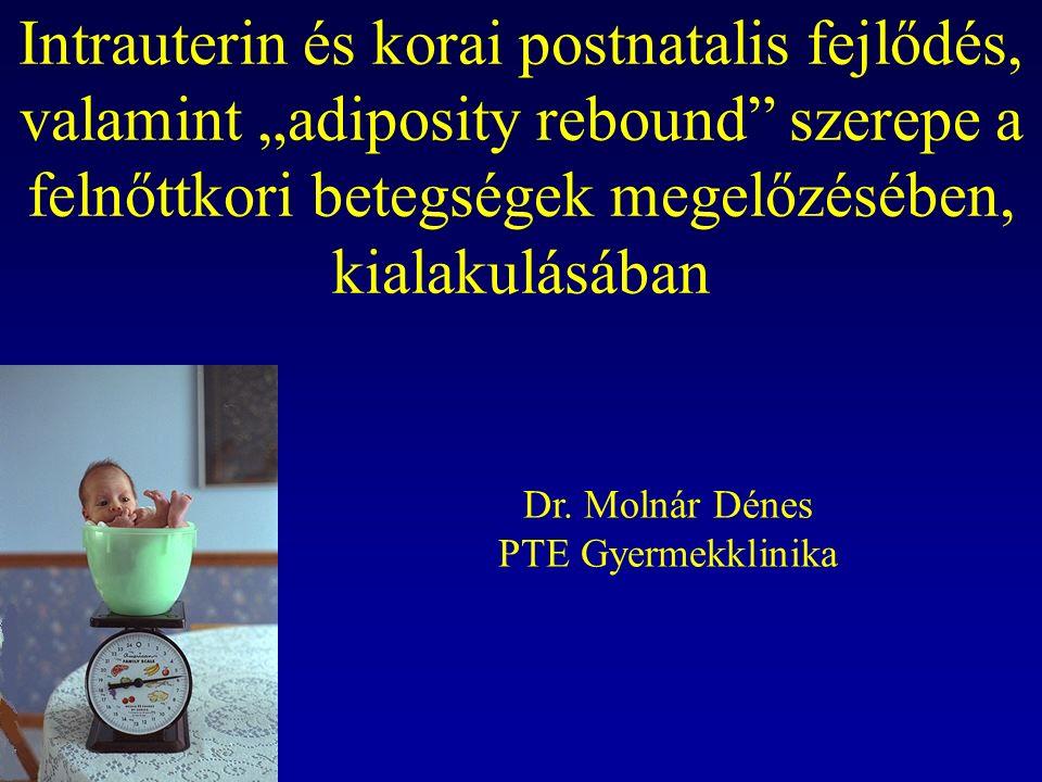 """Intrauterin és korai postnatalis fejlődés, valamint """"adiposity rebound szerepe a felnőttkori betegségek megelőzésében, kialakulásában Dr."""