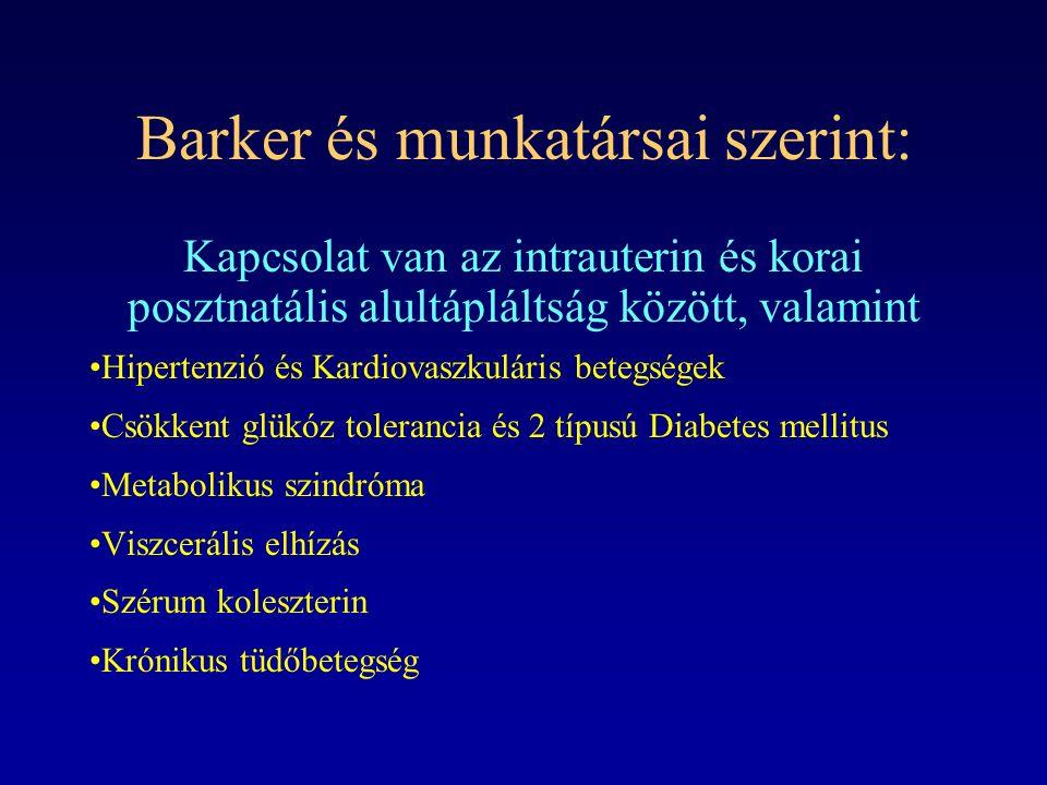 Barker és munkatársai szerint: Kapcsolat van az intrauterin és korai posztnatális alultápláltság között, valamint Hipertenzió és Kardiovaszkuláris bet
