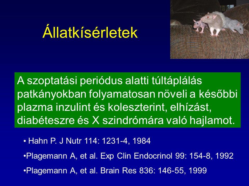 Állatkísérletek A szoptatási periódus alatti túltáplálás patkányokban folyamatosan növeli a későbbi plazma inzulint és koleszterint, elhízást, diabéte