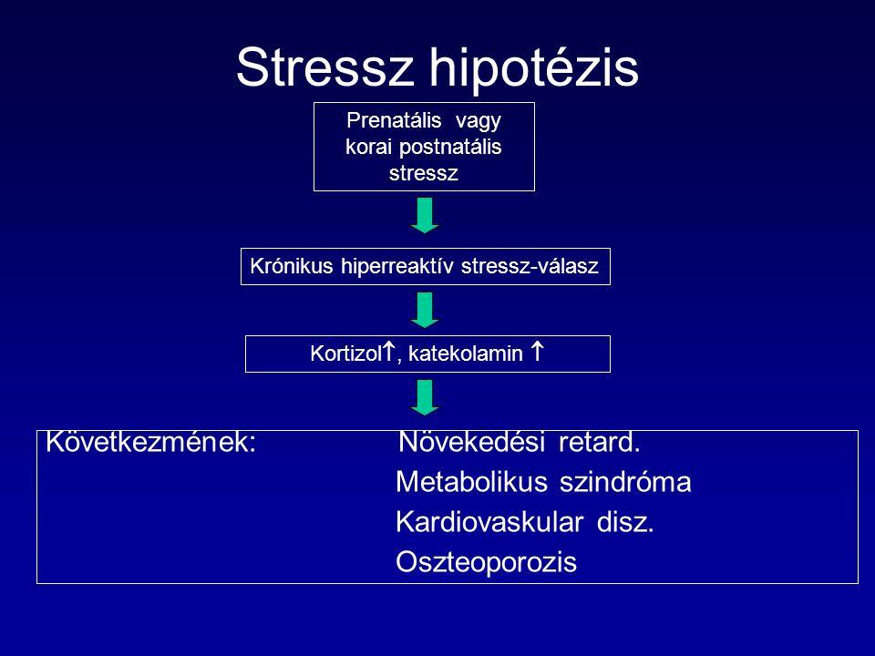 Stressz hipotézis Prenatális vagy korai postnatális stressz Krónikus hiperreaktív stressz-válasz Kortizol , katekolamin  Következmének: Növekedési retard.