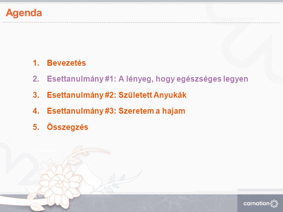 Sanofi Aventis / Normaflore Eredmények: Több mint 5200 kismama csatlakozott az oldalhoz.