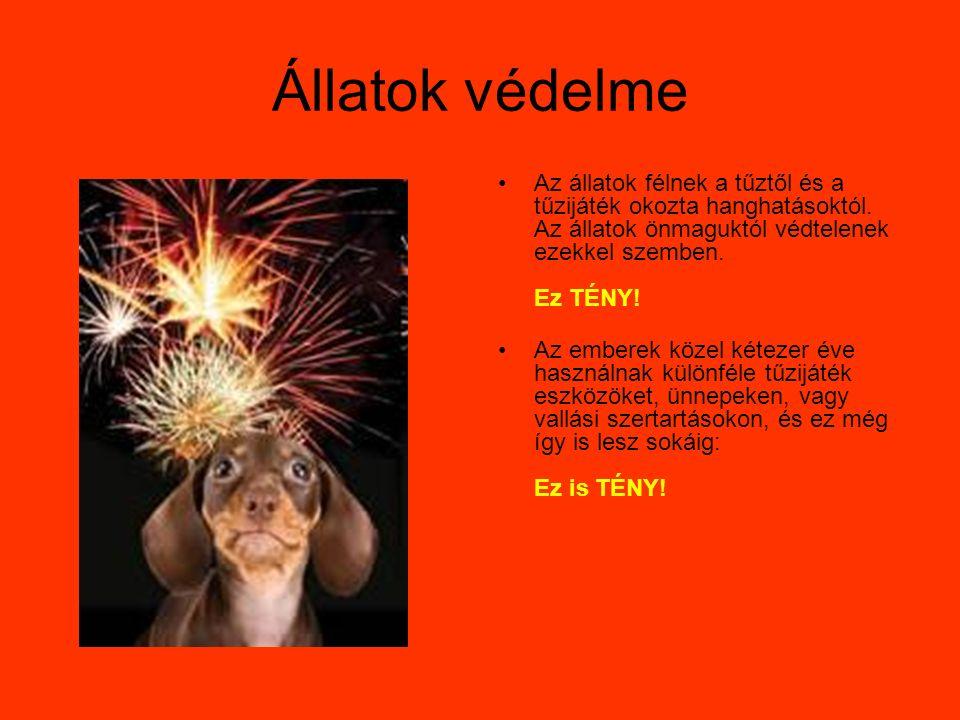 Állatok védelme Az állatok félnek a tűztől és a tűzijáték okozta hanghatásoktól.
