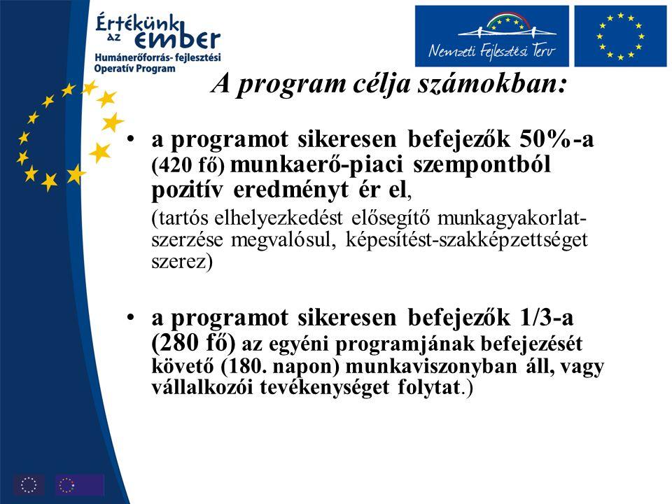 A program célja számokban: a programot sikeresen befejezők 50%-a (420 fő) munkaerő-piaci szempontból pozitív eredményt ér el, (tartós elhelyezkedést elősegítő munkagyakorlat- szerzése megvalósul, képesítést-szakképzettséget szerez) a programot sikeresen befejezők 1/3-a (280 fő) az egyéni programjának befejezését követő (180.
