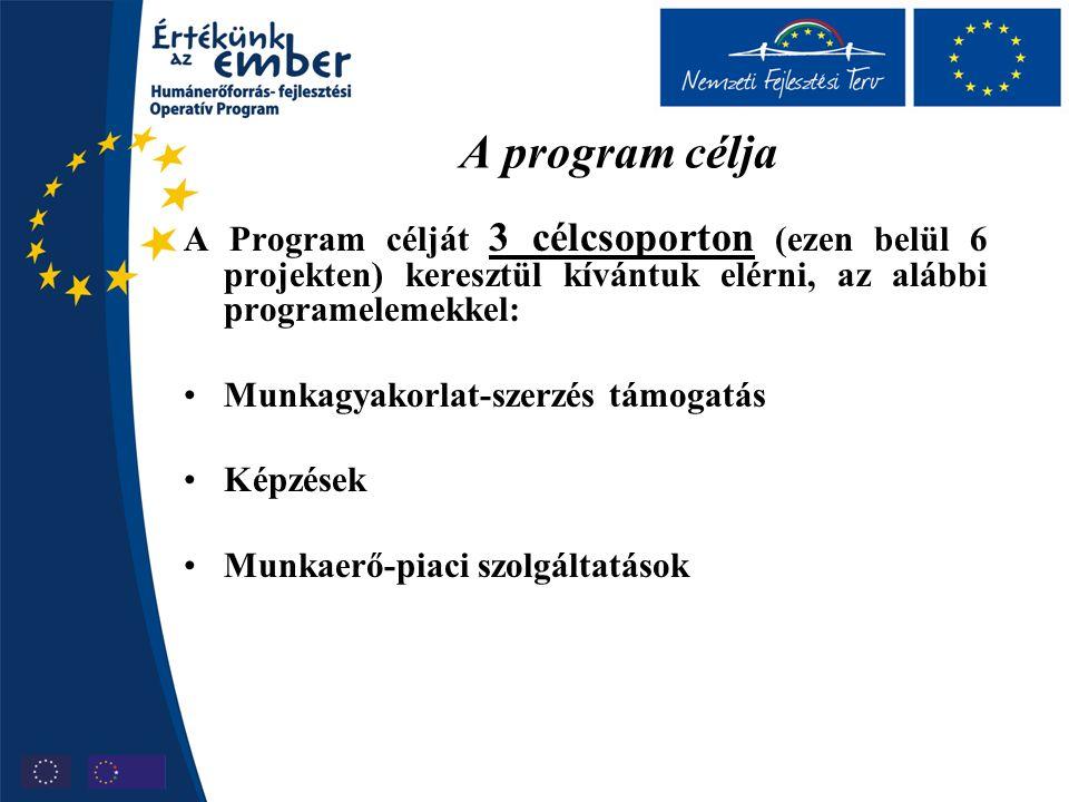 A program célja A Program célját 3 célcsoporton (ezen belül 6 projekten) keresztül kívántuk elérni, az alábbi programelemekkel: Munkagyakorlat-szerzés támogatás Képzések Munkaerő-piaci szolgáltatások