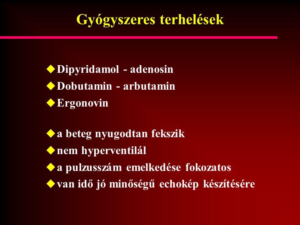 Gyógyszeres terhelések  Dipyridamol - adenosin  Dobutamin - arbutamin  Ergonovin  a beteg nyugodtan fekszik  nem hyperventilál  a pulzusszám eme