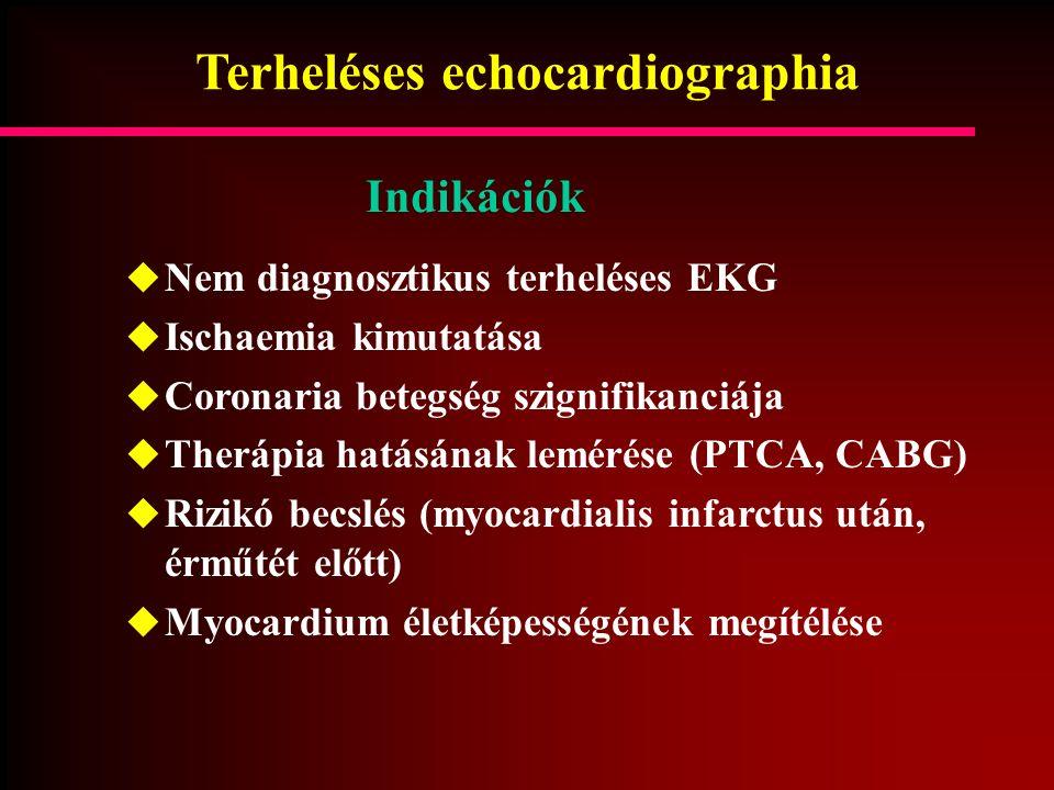 Terheléses echocardiographia  Nem diagnosztikus terheléses EKG  Ischaemia kimutatása  Coronaria betegség szignifikanciája  Therápia hatásának lemé