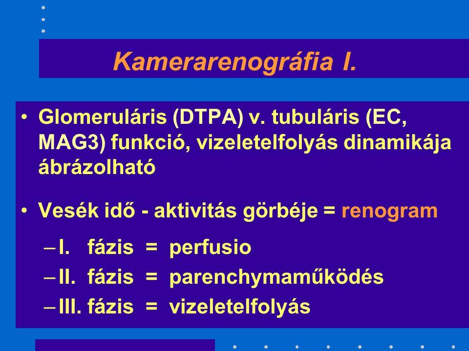 Kamerarenográfia I. Glomeruláris (DTPA) v.