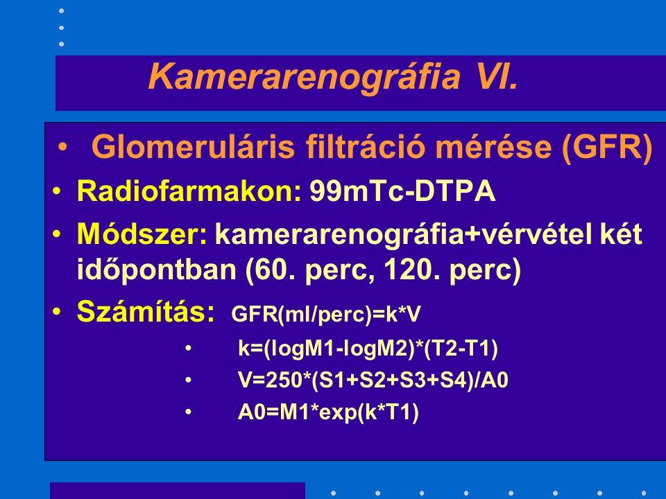 Kamerarenográfia VI.