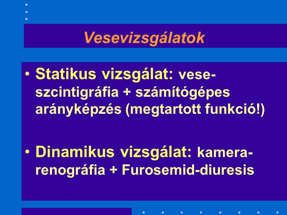 Vesevizsgálatok Statikus vizsgálat: vese- szcintigráfia + számítógépes arányképzés (megtartott funkció!) Dinamikus vizsgálat: kamera- renográfia + Furosemid-diuresis