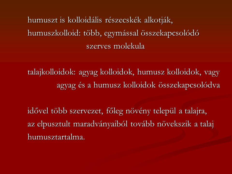 humuszt is kolloidális részecskék alkotják, humuszt is kolloidális részecskék alkotják, humuszkolloid: több, egymással összekapcsolódó humuszkolloid: több, egymással összekapcsolódó szerves molekula szerves molekula talajkolloidok: agyag kolloidok, humusz kolloidok, vagy talajkolloidok: agyag kolloidok, humusz kolloidok, vagy agyag és a humusz kolloidok összekapcsolódva agyag és a humusz kolloidok összekapcsolódva idővel több szervezet, főleg növény települ a talajra, idővel több szervezet, főleg növény települ a talajra, az elpusztult maradványaiból tovább növekszik a talaj az elpusztult maradványaiból tovább növekszik a talaj humusztartalma.