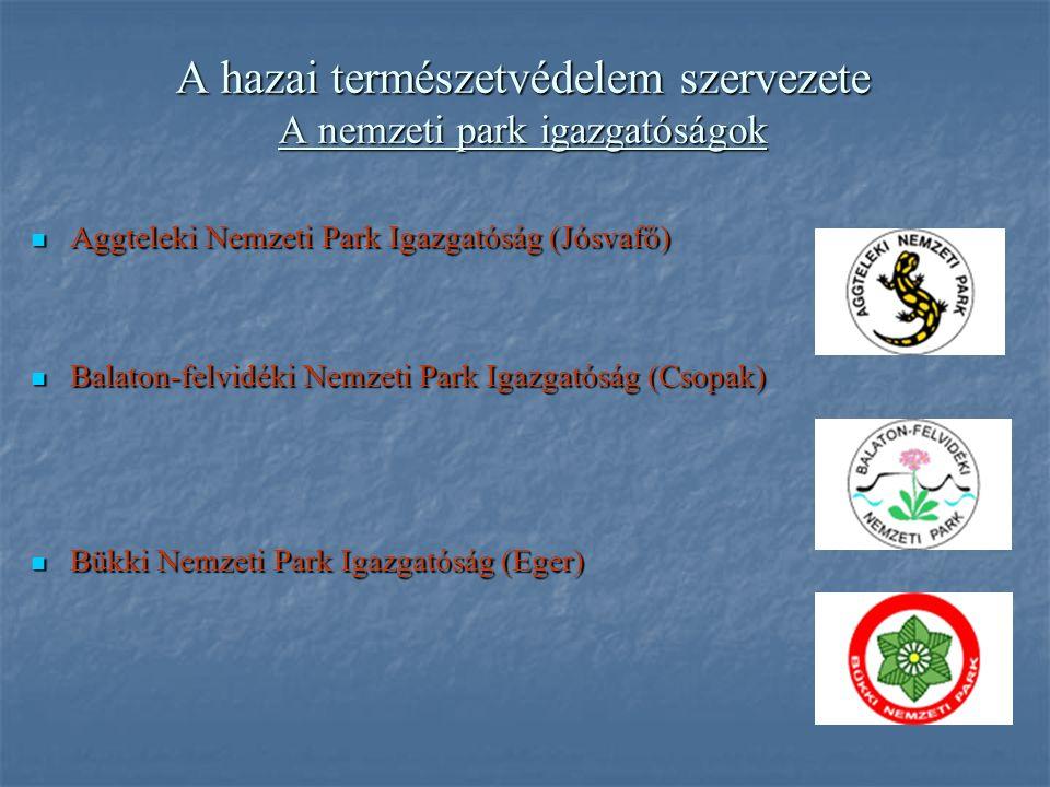 A hazai természetvédelem szervezete A nemzeti park igazgatóságok Aggteleki Nemzeti Park Igazgatóság (Jósvafő) Aggteleki Nemzeti Park Igazgatóság (Jósvafő) Balaton-felvidéki Nemzeti Park Igazgatóság (Csopak) Balaton-felvidéki Nemzeti Park Igazgatóság (Csopak) Bükki Nemzeti Park Igazgatóság (Eger) Bükki Nemzeti Park Igazgatóság (Eger)