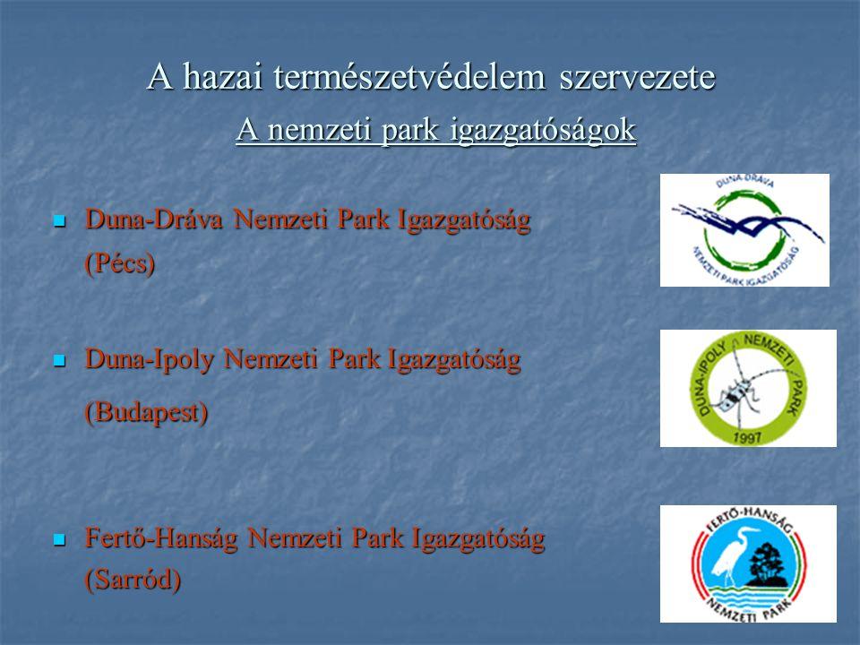 A hazai természetvédelem szervezete A nemzeti park igazgatóságok Duna-Dráva Nemzeti Park Igazgatóság Duna-Dráva Nemzeti Park Igazgatóság(Pécs) Duna-Ip