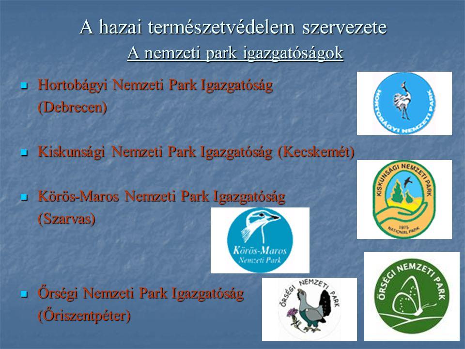 A hazai természetvédelem szervezete A nemzeti park igazgatóságok Hortobágyi Nemzeti Park Igazgatóság Hortobágyi Nemzeti Park Igazgatóság(Debrecen) Kiskunsági Nemzeti Park Igazgatóság (Kecskemét) Kiskunsági Nemzeti Park Igazgatóság (Kecskemét) Körös-Maros Nemzeti Park Igazgatóság Körös-Maros Nemzeti Park Igazgatóság(Szarvas) Őrségi Nemzeti Park Igazgatóság Őrségi Nemzeti Park Igazgatóság(Őriszentpéter)