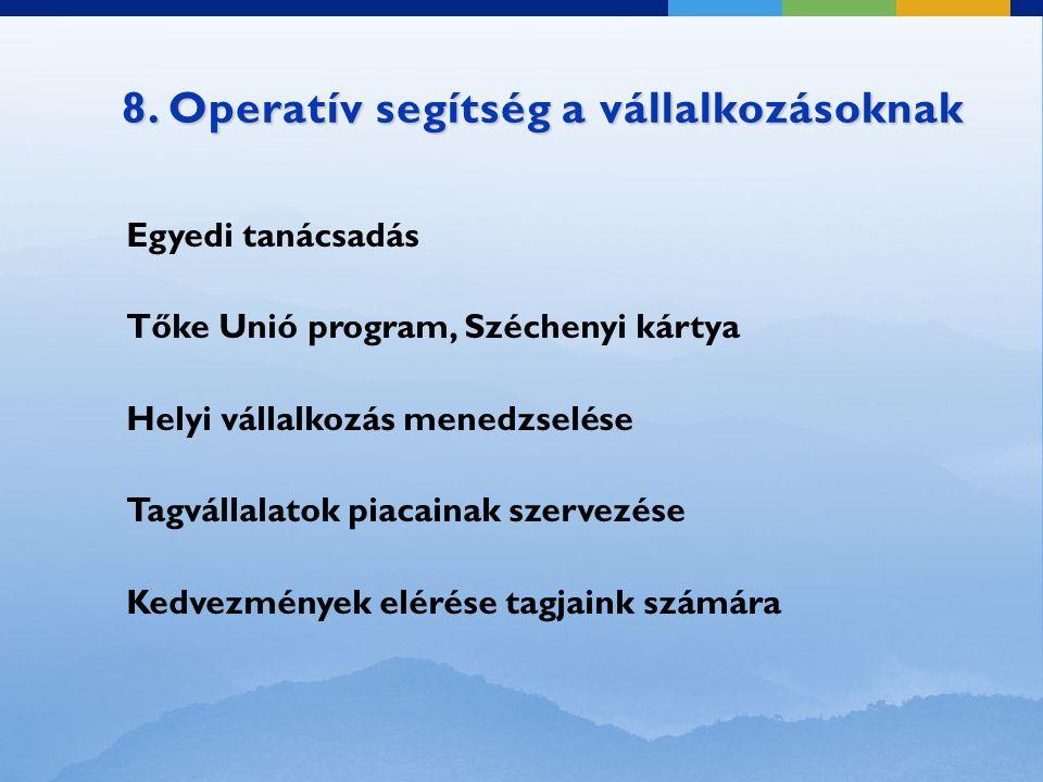 8. Operatív segítség a vállalkozásoknak Egyedi tanácsadás Tőke Unió program, Széchenyi kártya Helyi vállalkozás menedzselése Tagvállalatok piacainak s