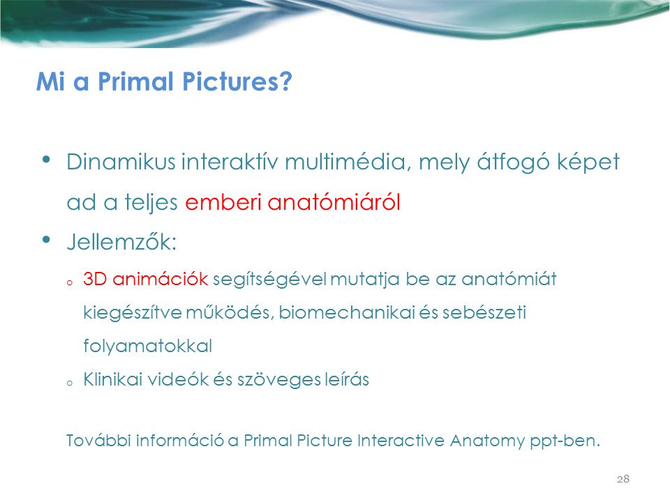 Mi a Primal Pictures.