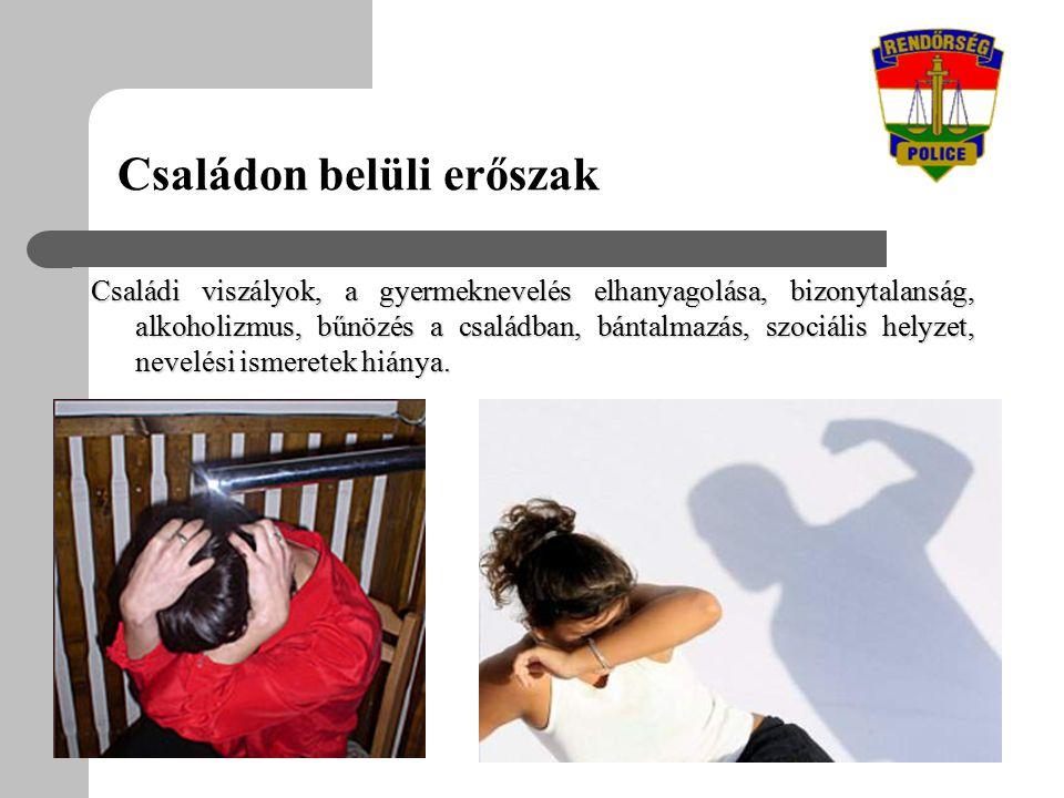 Családi viszályok, a gyermeknevelés elhanyagolása, bizonytalanság, alkoholizmus, bűnözés a családban, bántalmazás, szociális helyzet, nevelési ismeretek hiánya.