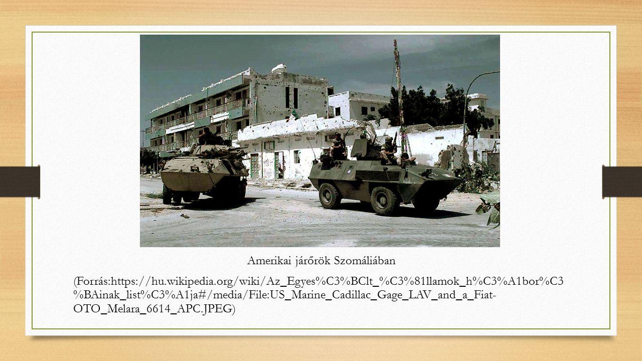 Amerikai járőrök Szomáliában (Forrás:https://hu.wikipedia.org/wiki/Az_Egyes%C3%BClt_%C3%81llamok_h%C3%A1bor%C3 %BAinak_list%C3%A1ja#/media/File:US_Marine_Cadillac_Gage_LAV_and_a_Fiat- OTO_Melara_6614_APC.JPEG)