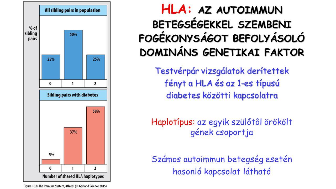 AZ AUTOIMMUN HLA: AZ AUTOIMMUN BETEGSÉGEKKEL SZEMBENI FOGÉKONYSÁGOT BEFOLYÁSOLÓ DOMINÁNS GENETIKAI FAKTOR Testvérpár vizsgálatok derítettek fényt a HLA és az 1-es típusú diabetes közötti kapcsolatra Számos autoimmun betegség esetén hasonló kapcsolat látható Haplotípus: az egyik szülőtől örökölt gének csoportja