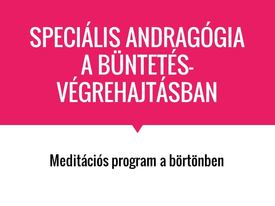 SPECIÁLIS ANDRAGÓGIA A BÜNTETÉS- VÉGREHAJTÁSBAN Meditációs program a börtönben