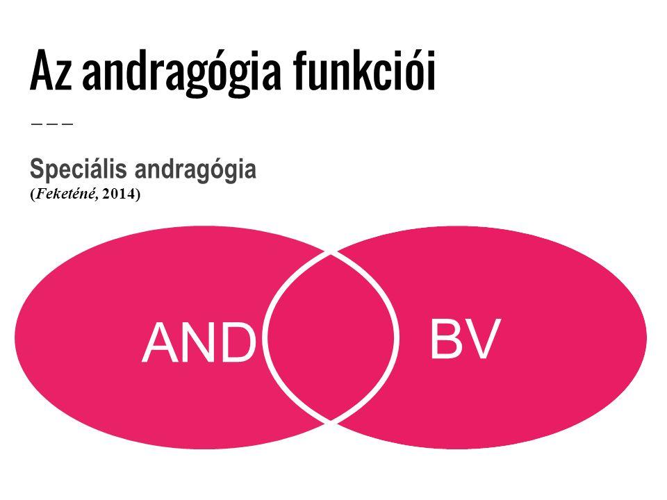 Az andragógia funkciói BV AND Speciális andragógia (Feketéné, 2014)