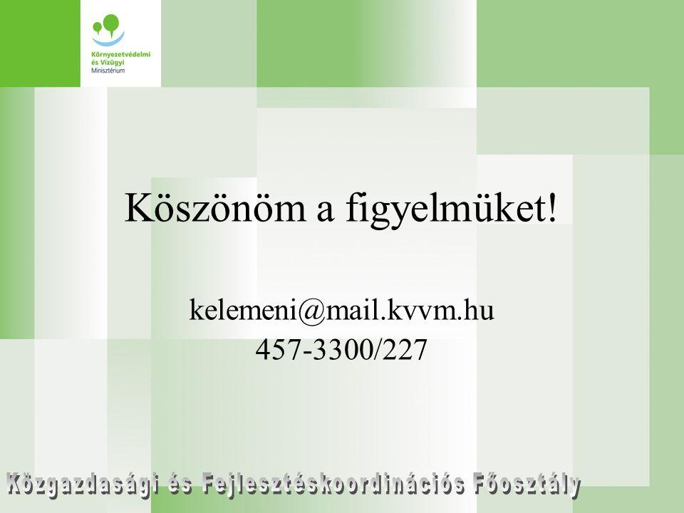 Köszönöm a figyelmüket! kelemeni@mail.kvvm.hu 457-3300/227