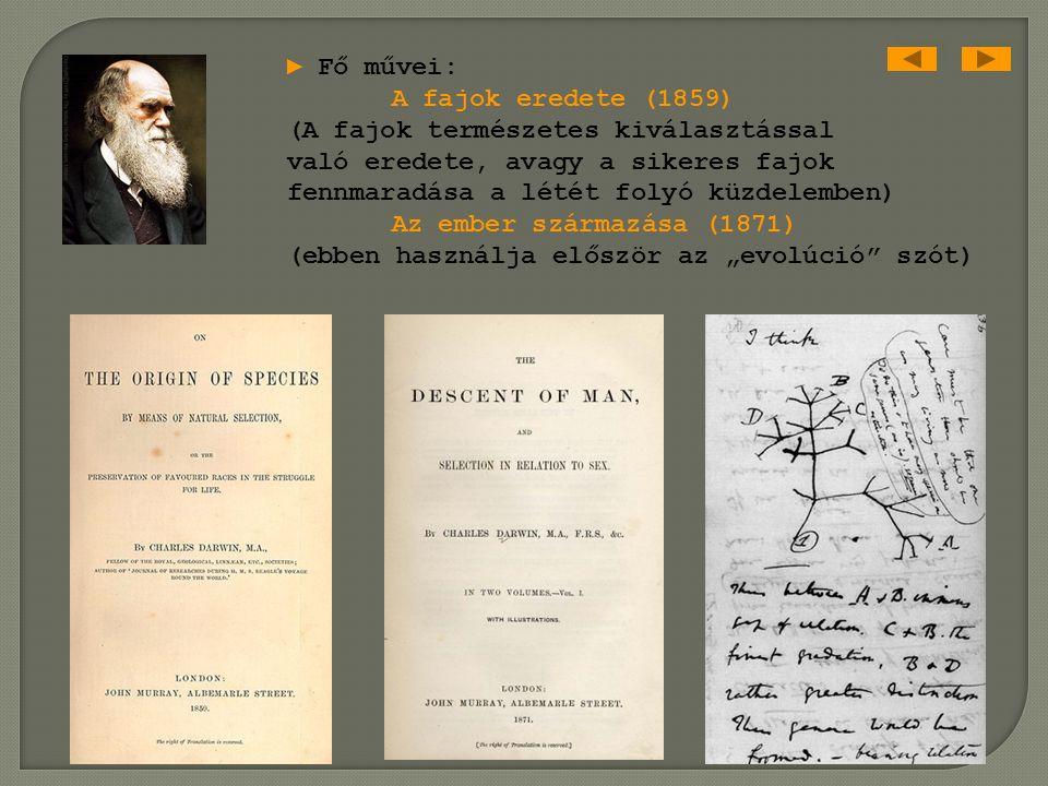 Charles Darwin 1809-1882 angol természettudós ► 1832-1837: világkörüli út ► fajok elméletének eredete (darwinizmus) ► evolúciós mechanizmusok, termész