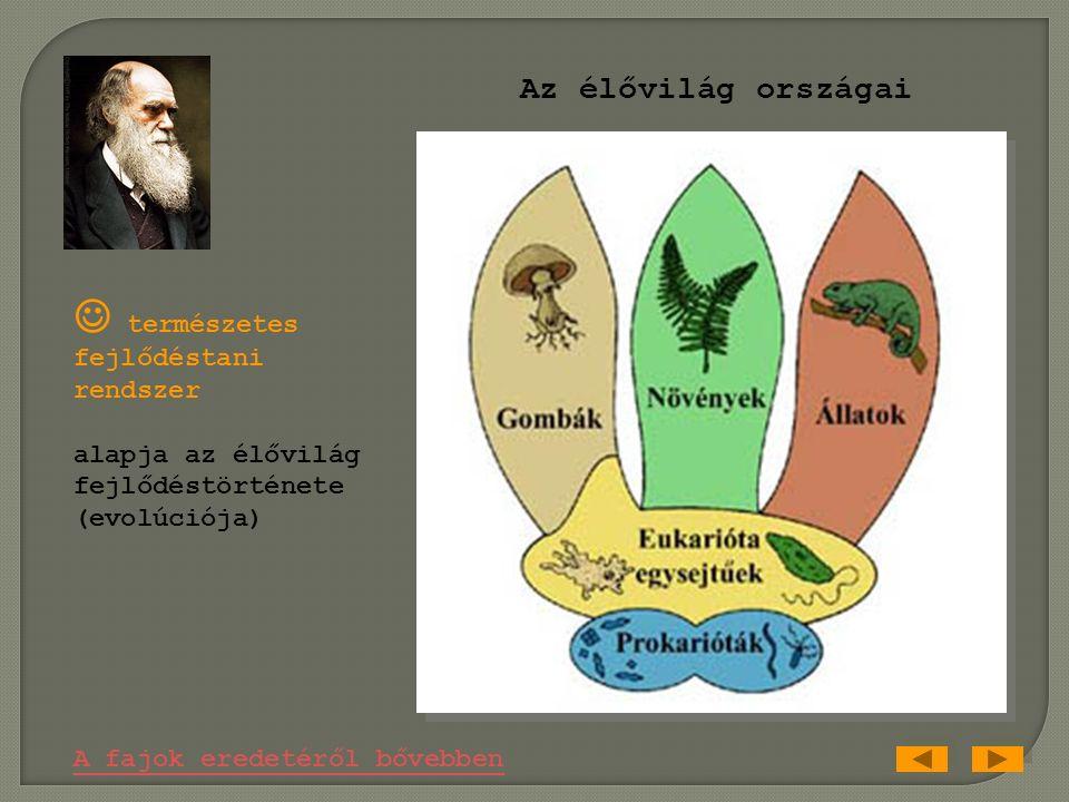 ► Fő művei: A fajok eredete (1859) (A fajok természetes kiválasztással való eredete, avagy a sikeres fajok fennmaradása a létét folyó küzdelemben) Az