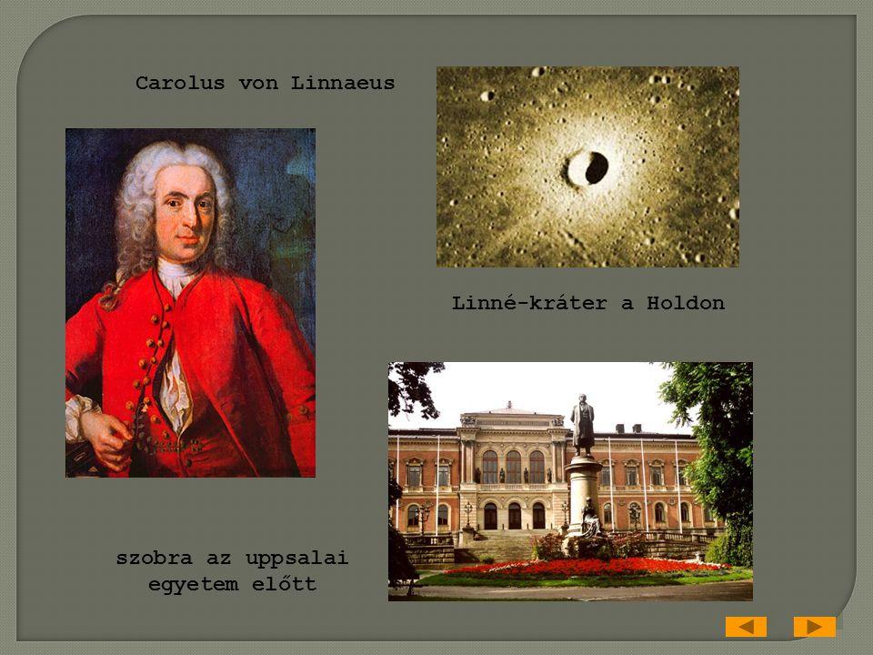 Linné-kráter a Holdon szobra az uppsalai egyetem előtt Carolus von Linnaeus