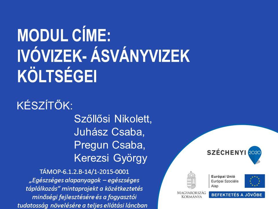 TARTALOM A természetes ásványvíz, gyógyvíz, forrásvíz és az ivóvíz Ásványvíz lelőhelyek felmérése Magyarországon Néhány kiemelt kútról Az ásványvíz kitermelés és gyártás folyamata Az iparág és a környezetvédelem kapcsolódása Az ásványvíz költségei Kereskedelem, marketing szerepe az árképzésben Települési ivóvíz ellátás és ivóvíz szolgáltatás TÁMOP-6.1.2.B-14/1-2015-0001
