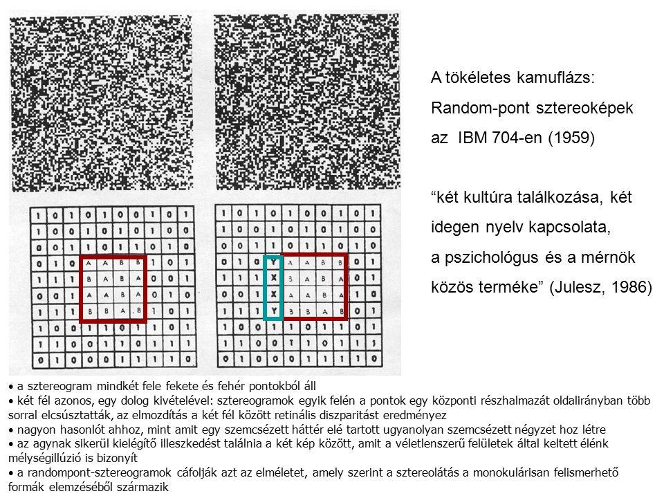 A tökéletes kamuflázs: Random-pont sztereoképek az IBM 704-en (1959) két kultúra találkozása, két idegen nyelv kapcsolata, a pszichológus és a mérnök közös terméke (Julesz, 1986) a sztereogram mindkét fele fekete és fehér pontokból áll két fél azonos, egy dolog kivételével: sztereogramok egyik felén a pontok egy központi részhalmazát oldalirányban több sorral elcsúsztatták, az elmozdítás a két fél között retinális diszparitást eredményez nagyon hasonlót ahhoz, mint amit egy szemcsézett háttér elé tartott ugyanolyan szemcsézett négyzet hoz létre az agynak sikerül kielégítő illeszkedést találnia a két kép között, amit a véletlenszerű felületek által keltett élénk mélységillúzió is bizonyít a randompont-sztereogramok cáfolják azt az elméletet, amely szerint a sztereolátás a monokulárisan felismerhető formák elemzéséből származik
