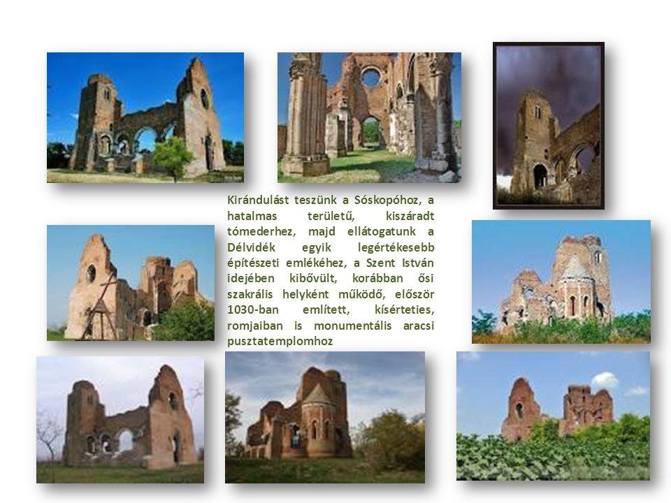 Kirándulást teszünk a Sóskopóhoz, a hatalmas területű, kiszáradt tómederhez, majd ellátogatunk a Délvidék egyik legértékesebb építészeti emlékéhez, a Szent István idejében kibővült, korábban ősi szakrális helyként működő, először 1030-ban említett, kísérteties, romjaiban is monumentális aracsi pusztatemplomhoz