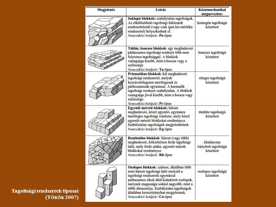 Tagoltsági rendszerek típusai (T ÖRÖK 2007)