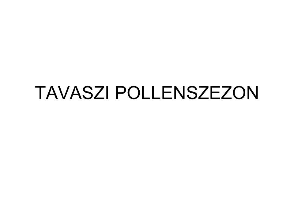 Nyír (Betula sp.) Virágzás ideje: március-május Pollen mennyisége: 6millió pollen/barka Allergenitás: igen erős allergén