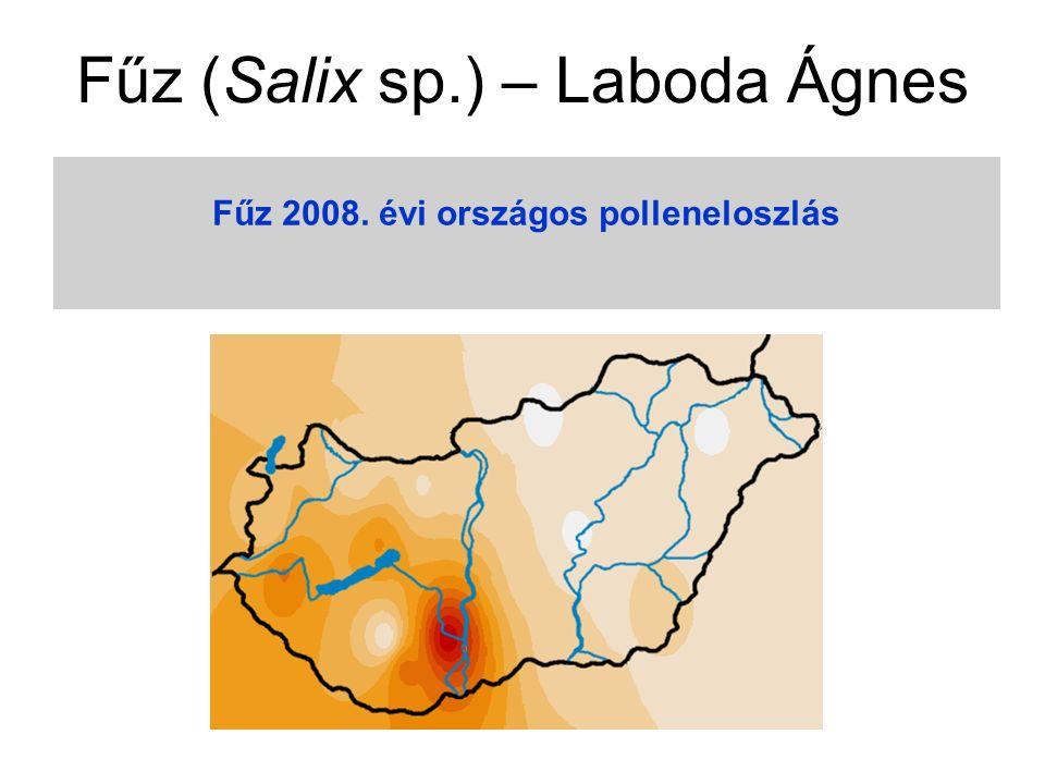 Fűz 2008. évi országos polleneloszlás Fűz (Salix sp.) – Laboda Ágnes