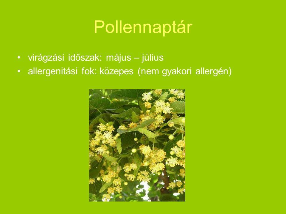 Pollennaptár virágzási időszak: május – július allergenitási fok: közepes (nem gyakori allergén)
