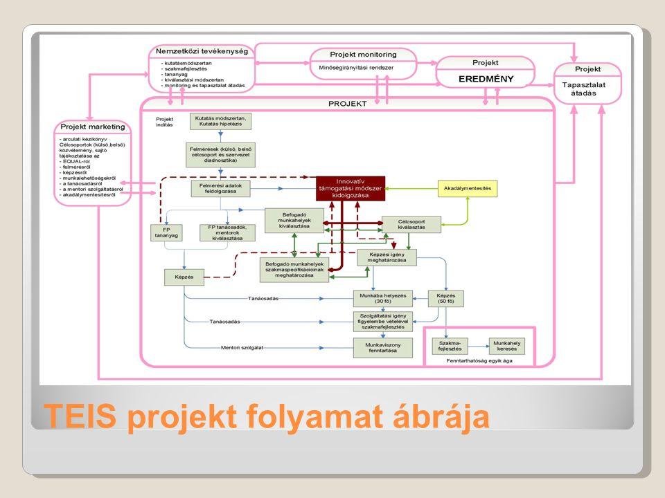 TEIS projekt folyamat ábrája