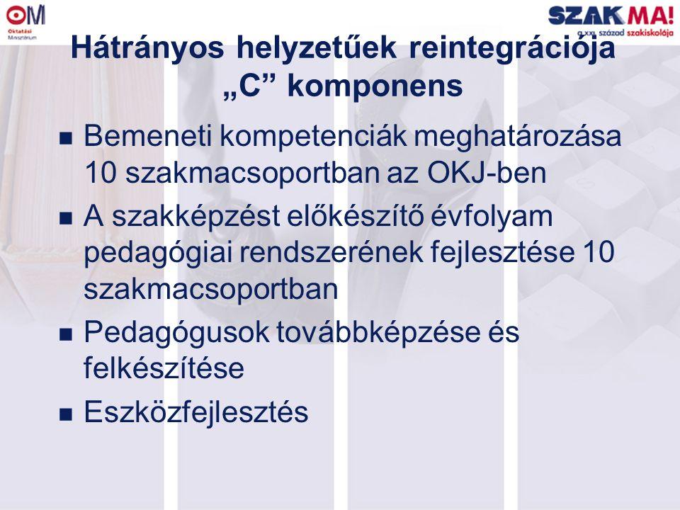 """Hátrányos helyzetűek reintegrációja """"C komponens n Bemeneti kompetenciák meghatározása 10 szakmacsoportban az OKJ-ben n A szakképzést előkészítő évfolyam pedagógiai rendszerének fejlesztése 10 szakmacsoportban n Pedagógusok továbbképzése és felkészítése n Eszközfejlesztés"""