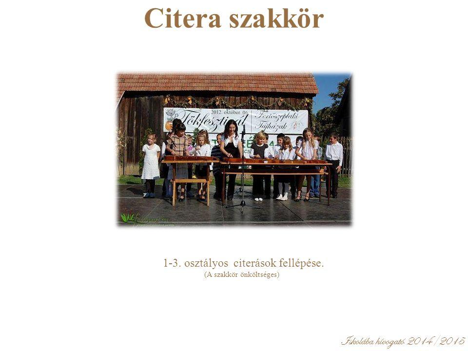 Iskolába hívogató 2014/2015 Citera szakkör 1-3. osztályos citerások fellépése.