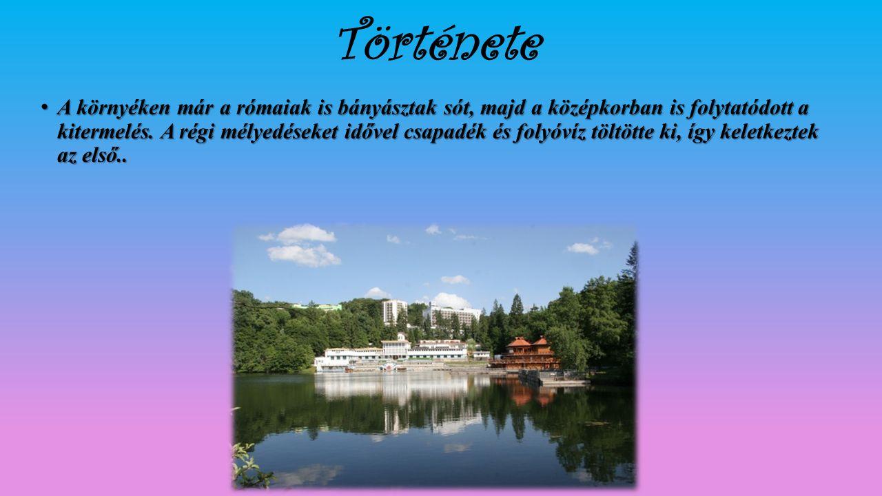 A trianoni békeszerződésig Maros-Torda vármegye Nyárádszeredai járásához tartozott.1992-ben 8935 lakosából 7943 magyar, 891 román, 39 cigány, 10 német, közülük 4527 római katolikus, 2979 református, 872 ortodox.