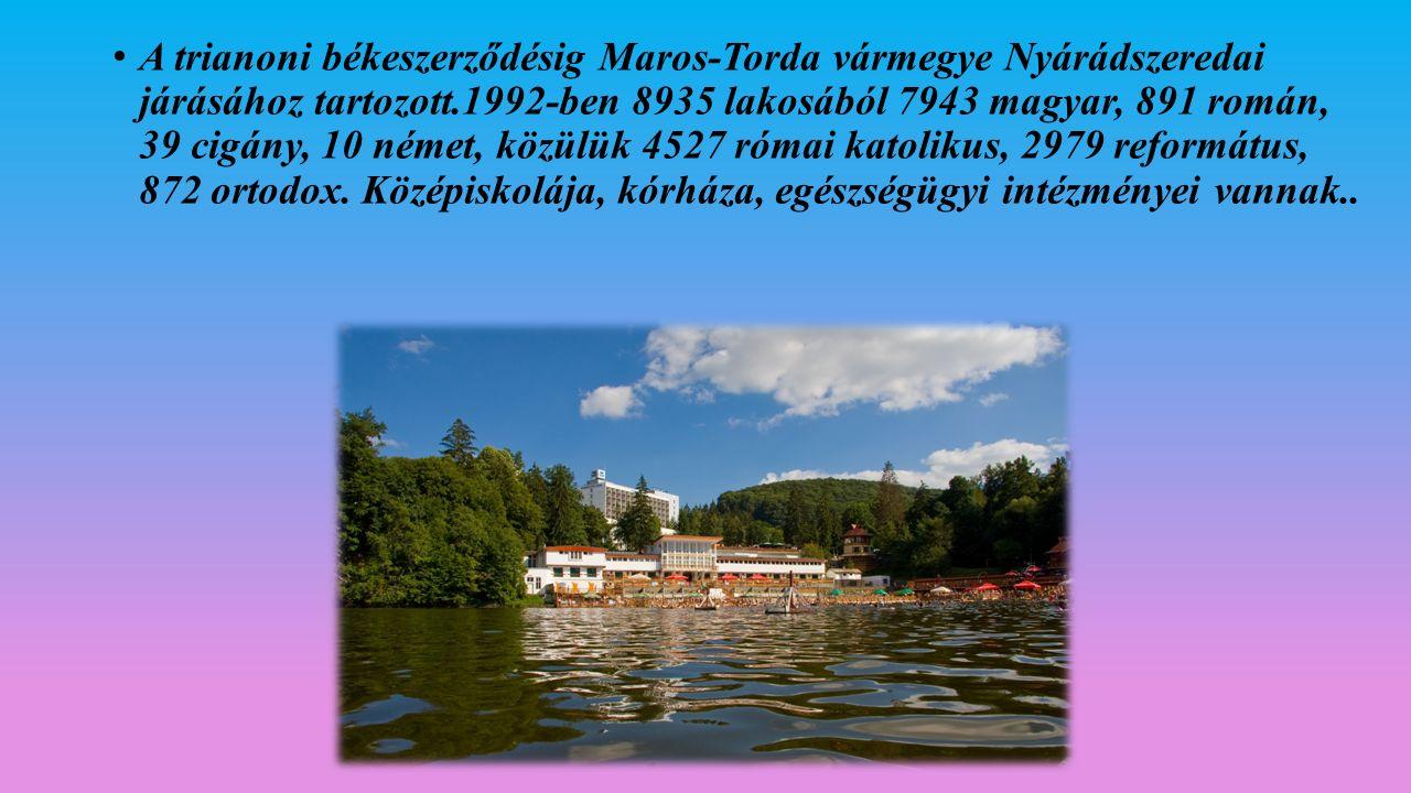 A trianoni békeszerződésig Maros-Torda vármegye Nyárádszeredai járásához tartozott.1992-ben 8935 lakosából 7943 magyar, 891 román, 39 cigány, 10 német