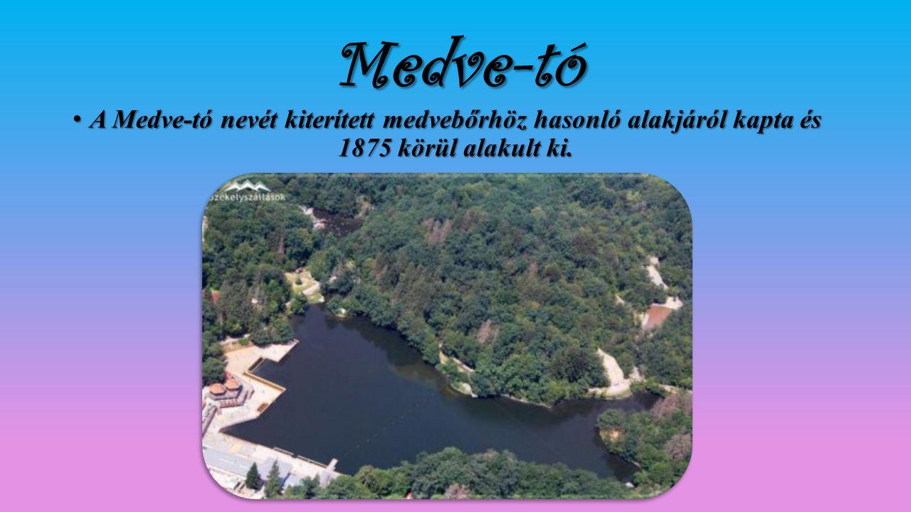 Medve-tó A Medve-tó nevét kiterített medvebőrhöz hasonló alakjáról kapta és 1875 körül alakult ki.A Medve-tó nevét kiterített medvebőrhöz hasonló alak