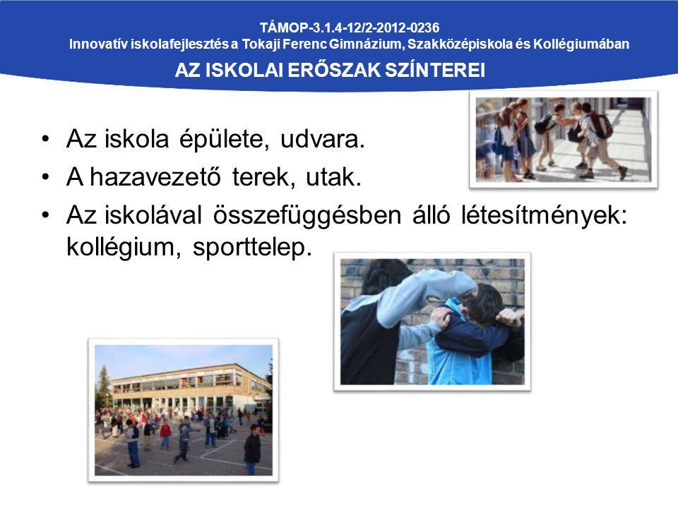 TÁMOP-3.1.4-12/2-2012-0236 Innovatív iskolafejlesztés a Tokaji Ferenc Gimnázium, Szakközépiskola és Kollégiumában AZ ISKOLAI ERŐSZAK SZÍNTEREI Az iskola épülete, udvara.