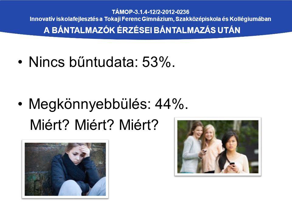 TÁMOP-3.1.4-12/2-2012-0236 Innovatív iskolafejlesztés a Tokaji Ferenc Gimnázium, Szakközépiskola és Kollégiumában A BÁNTALMAZÓK ÉRZÉSEI BÁNTALMAZÁS UTÁN Nincs bűntudata: 53%.