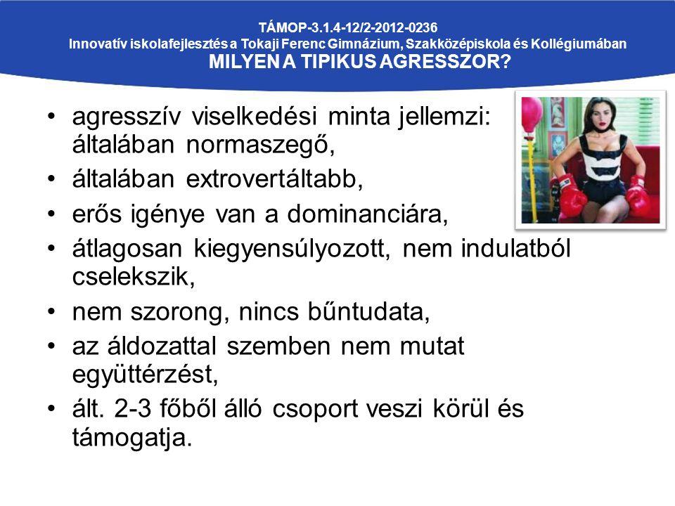 TÁMOP-3.1.4-12/2-2012-0236 Innovatív iskolafejlesztés a Tokaji Ferenc Gimnázium, Szakközépiskola és Kollégiumában MILYEN A TIPIKUS AGRESSZOR.