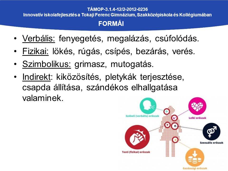 TÁMOP-3.1.4-12/2-2012-0236 Innovatív iskolafejlesztés a Tokaji Ferenc Gimnázium, Szakközépiskola és Kollégiumában FORMÁI Verbális: fenyegetés, megalázás, csúfolódás.