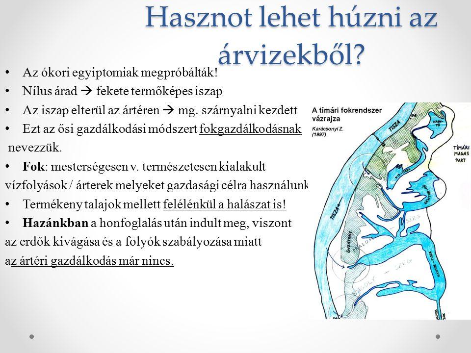 Megelőzések Magyar árvízvédelem – 1838 Árvízvédelem: egy vízügyi szakágazati tevékenység, melynek célja az árvízvédelmi művek létesítése és fejlesztése, továbbá az árvízvédekezés előkészítése, lebonyolítása és az utómunkák elvégzése.
