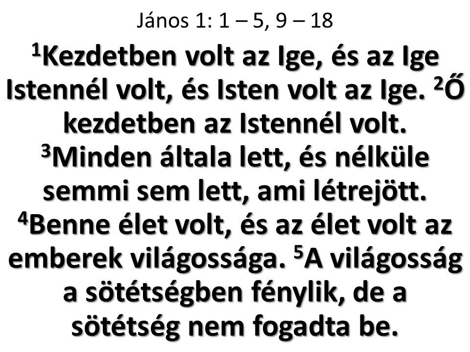 1 Kezdetben volt az Ige, és az Ige Istennél volt, és Isten volt az Ige.