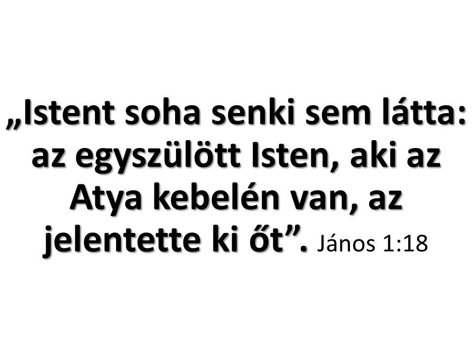 """""""Istent soha senki sem látta: az egyszülött Isten, aki az Atya kebelén van, az jelentette ki őt ."""
