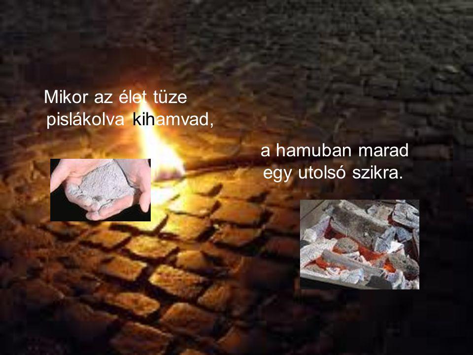 Mikor az élet tüze pislákolva kihamvad, a hamuban marad egy utolsó szikra.